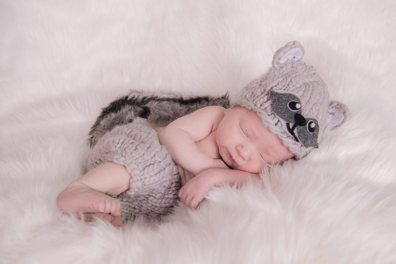 JandDstudio-baby-newborn-infant-studio-raccoon