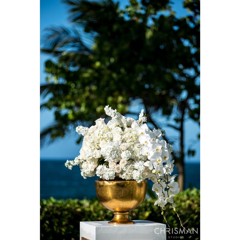 19-Dorado-Beach-Ritz-Carlton-Reserve-Wedding-Chrisman-Studios