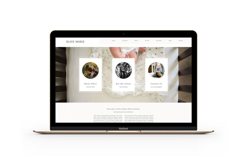 Easy to customize drag and drop website templates for newborn photographers