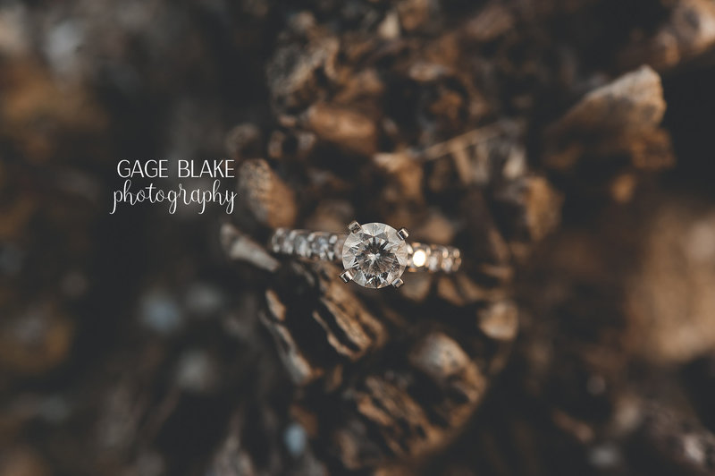 www.gageblakephotography-weddings.com - toledo wedding photographers 1