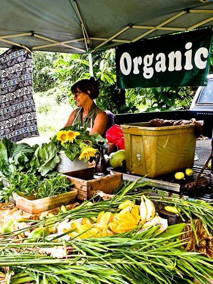 North shore natural, healthy market