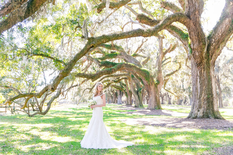 Boone Hall Bridal Portrait Session