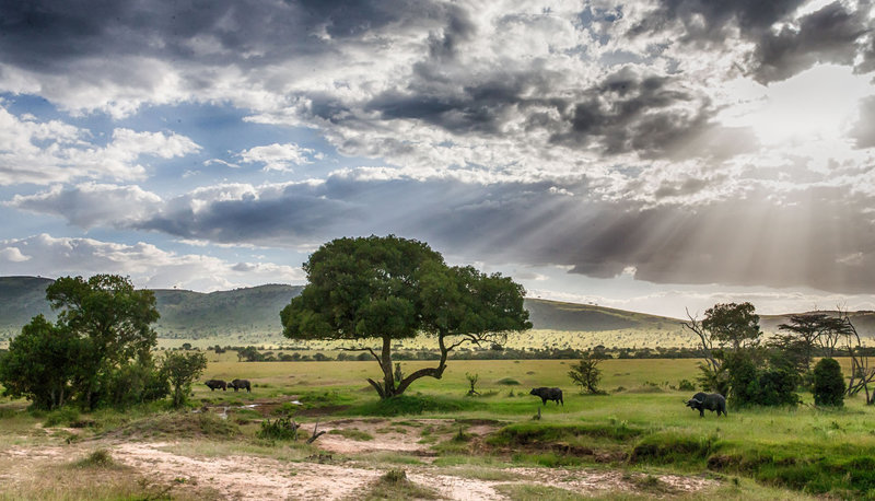 Tanzania-landscape-on-a-safari-with-andBeyond