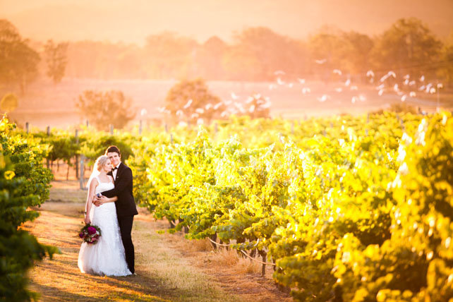 Albert River Wines Wedding Photo-19