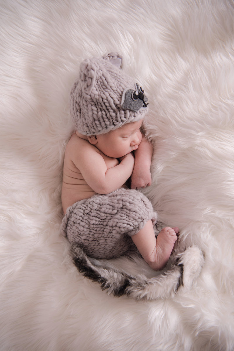 JandDstudio-baby-newborn-infant-studio-raccoon (2)