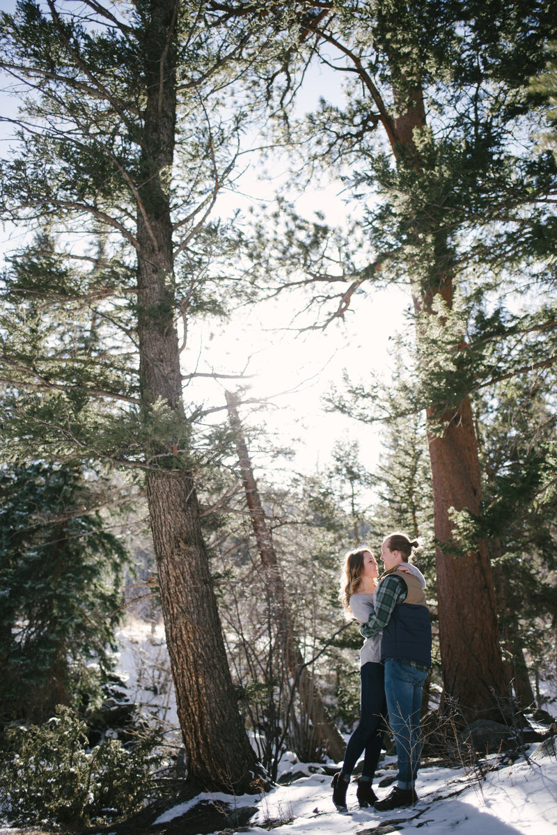 rocky mountain national park forest engagement