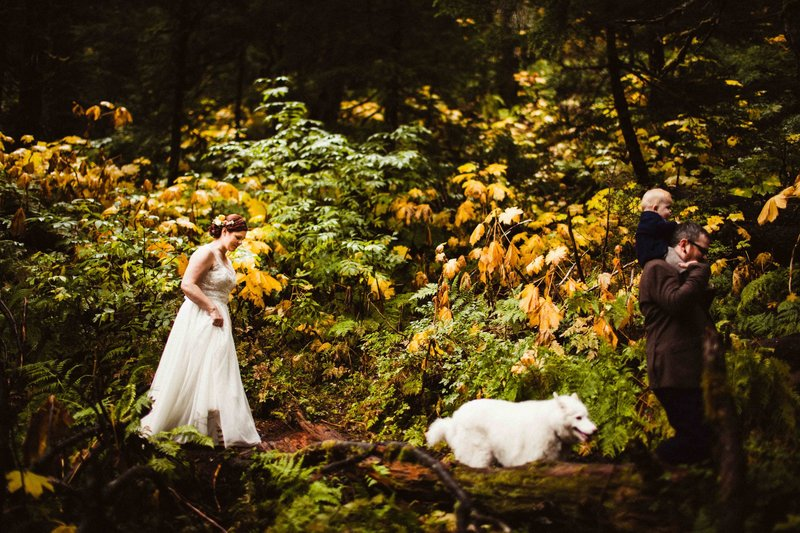 TheWilkeys-GirdwoodElopement-VirginCreekFallsWedding-©LaurenRoberts2016-20