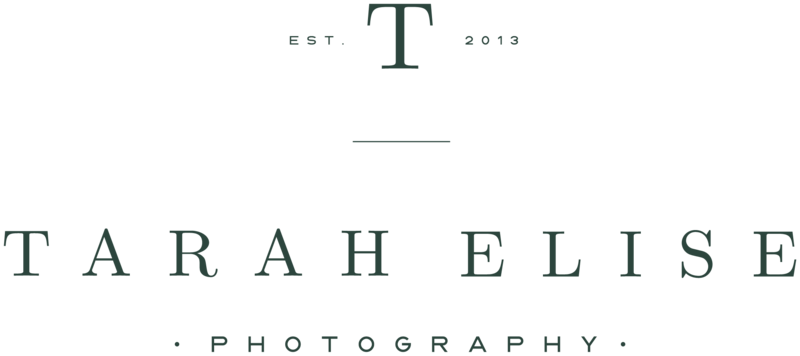 Tarah Elise Photography - With Grace and Gold - Logo Design, Stationery Design, and Web Design for Creative Women in Business - Photo - 6