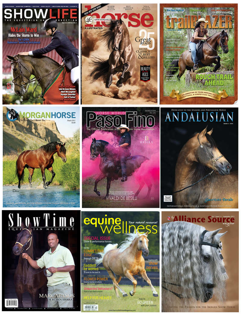 horse-magazine-covers-equine-stunning-steeds