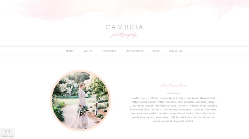 Cambria ProPhoto 6