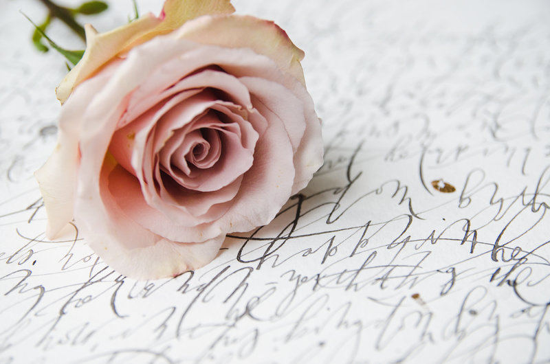 A beautiful blush rose sits upon hand-lettered calligraphy