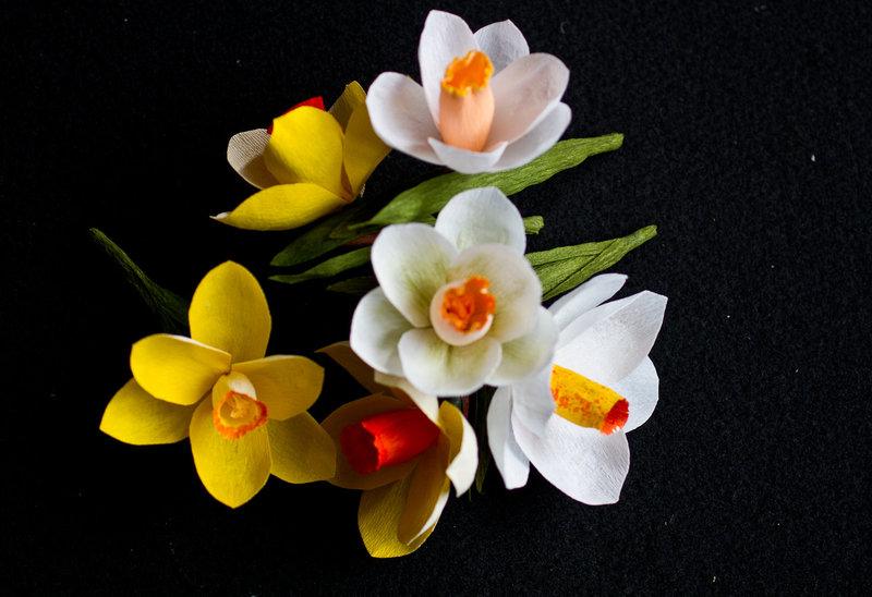 Quynh Gallerydaffodils1