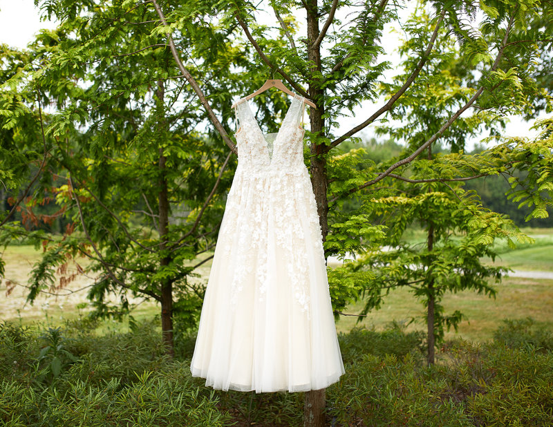 BHLDN white wedding dress hanging from tree