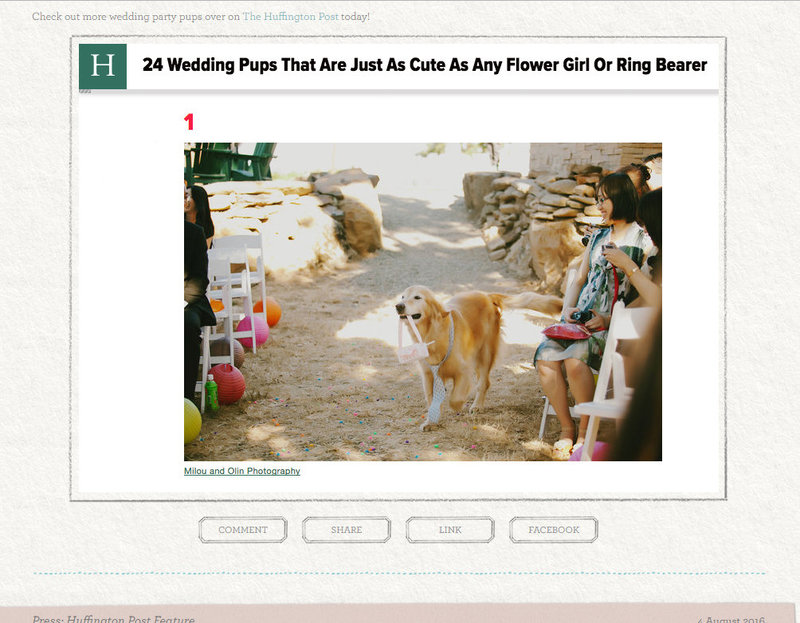 huffingtonpost_weddingpups