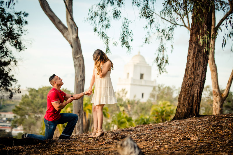 Zouls Photography Proposal