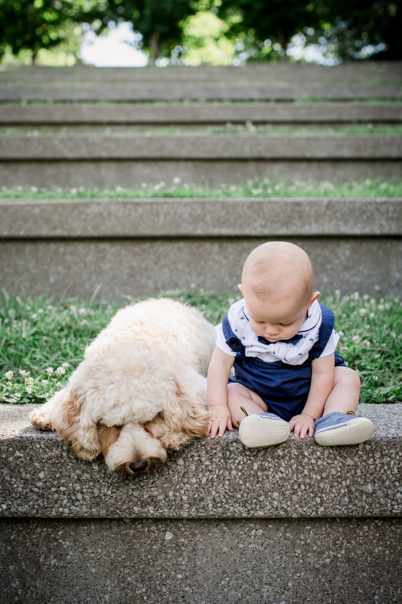 A boy and his puppy by Knoxville Wedding Photographer, Amanda May Photos.