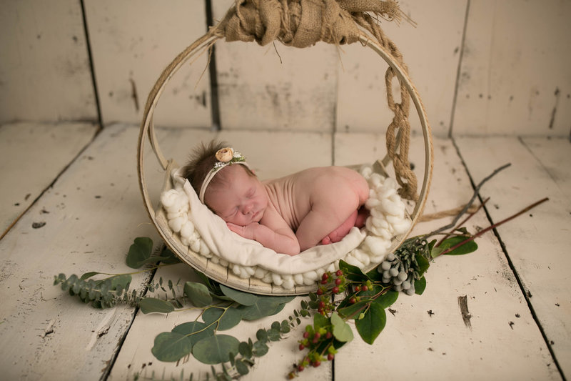 chicago newborn photographers illinois