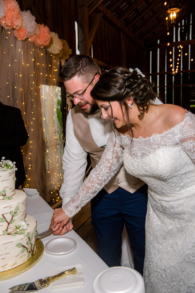 JandDstudio-wedding-gettysburg-brideandgroom-cakecutting