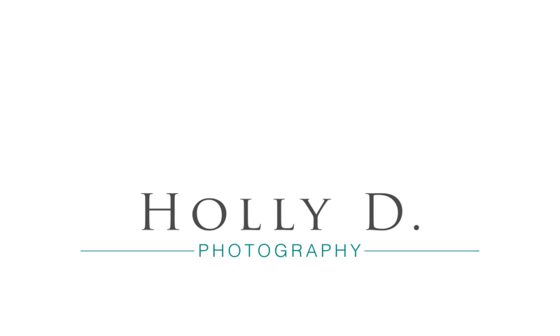 new-holly_d_photography_logo_final horizontal