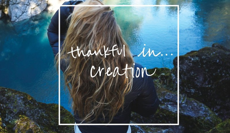 thankfulin_creation_feature