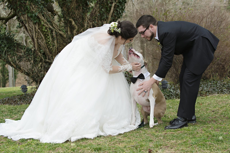 JandDstudio-antrim-1844-maryland-wedding-photography-brideandgroom-outdoor-vintage-dog