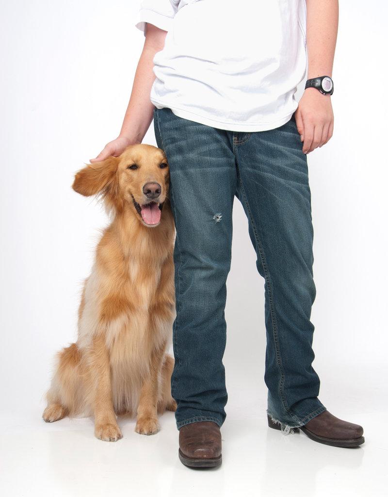 kin_dog