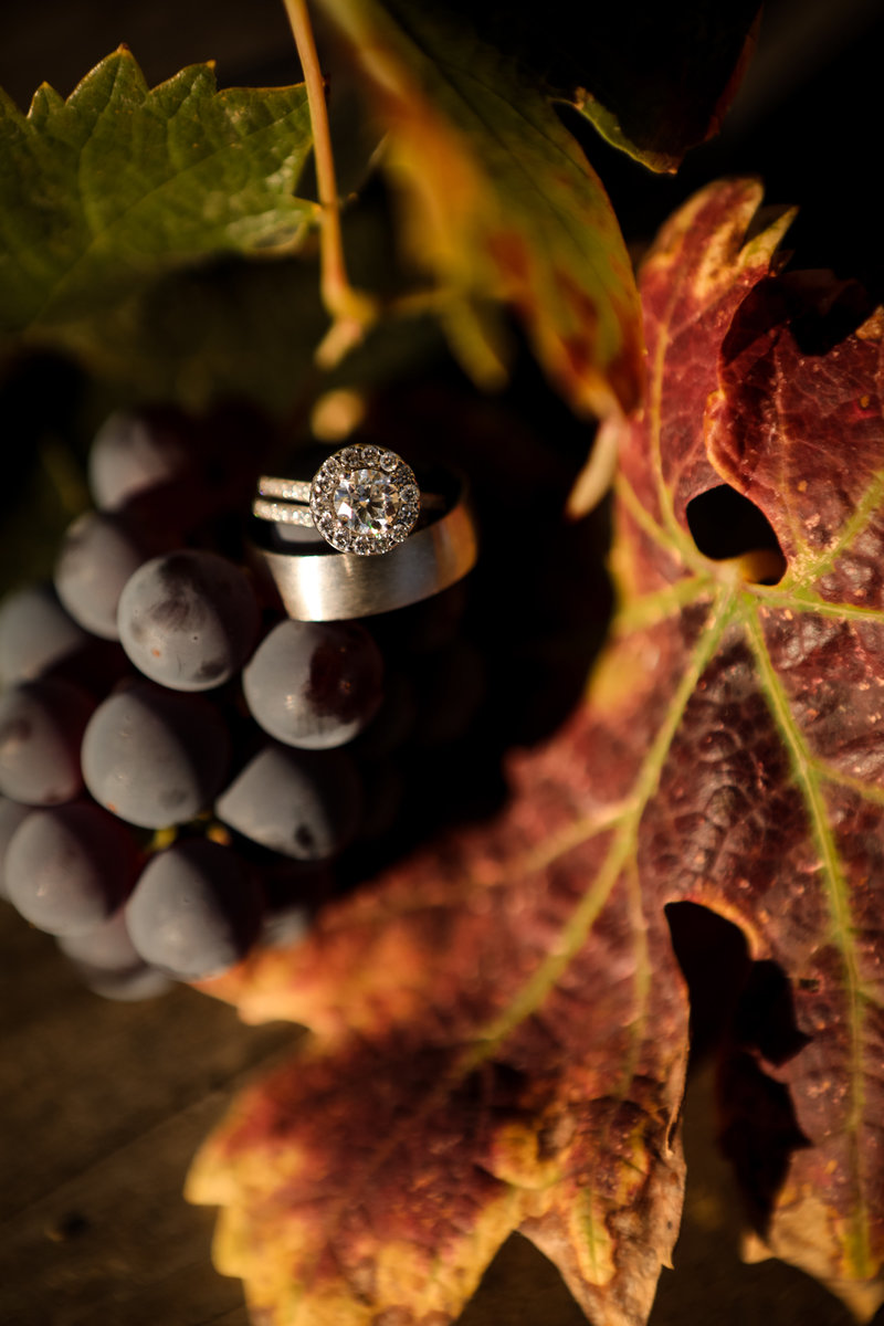 rings_and_grapes_by_cassia_karin-100