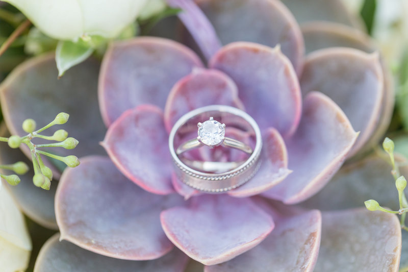 Wedding Ring, Succulent Wedding Bouquet, Indian Wells Wedding Photographer