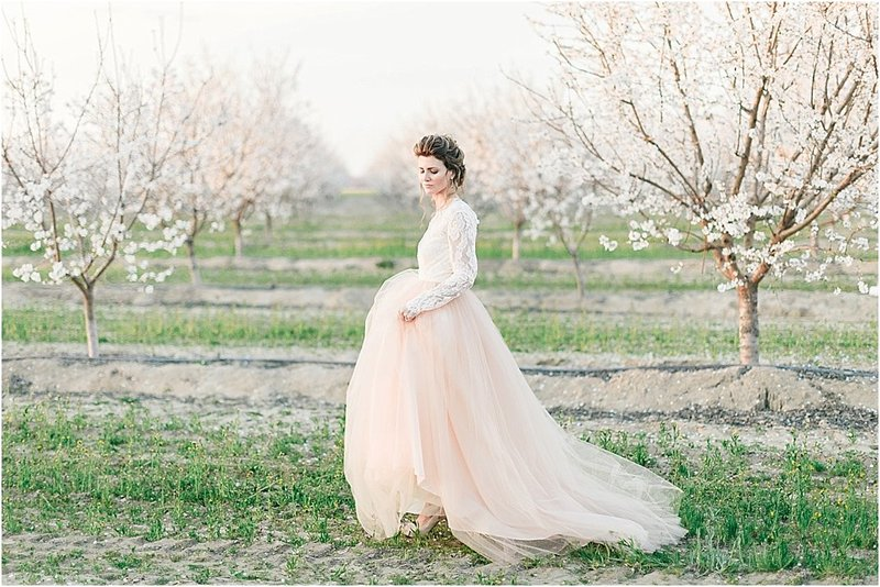almond orchard inspiration_0022