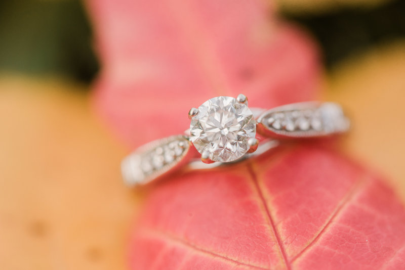Red Deer Photographers-Raelene Schulmeister Photography- engagement photos-diamond ring