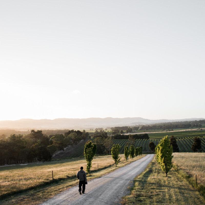 Australia-ToddPorter-DianeCu-025-2016-Portfolio-2