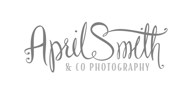 logo-AprilSmith-final_new-grey