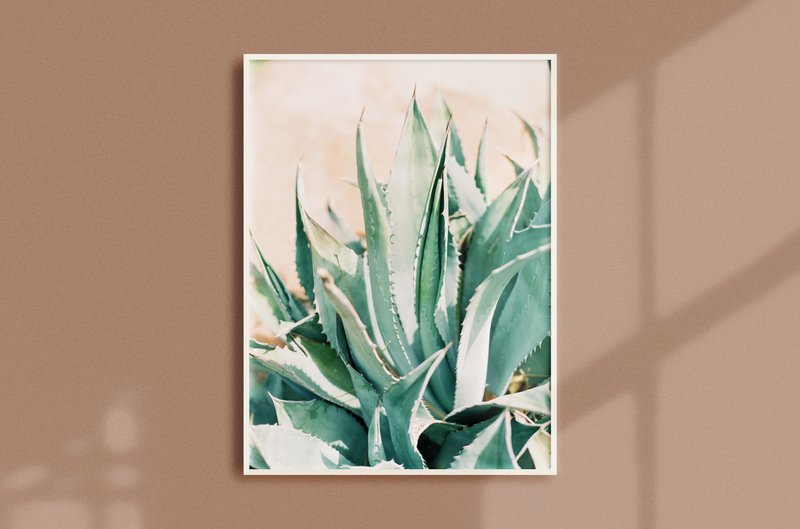 Frame Mockup orange cactus