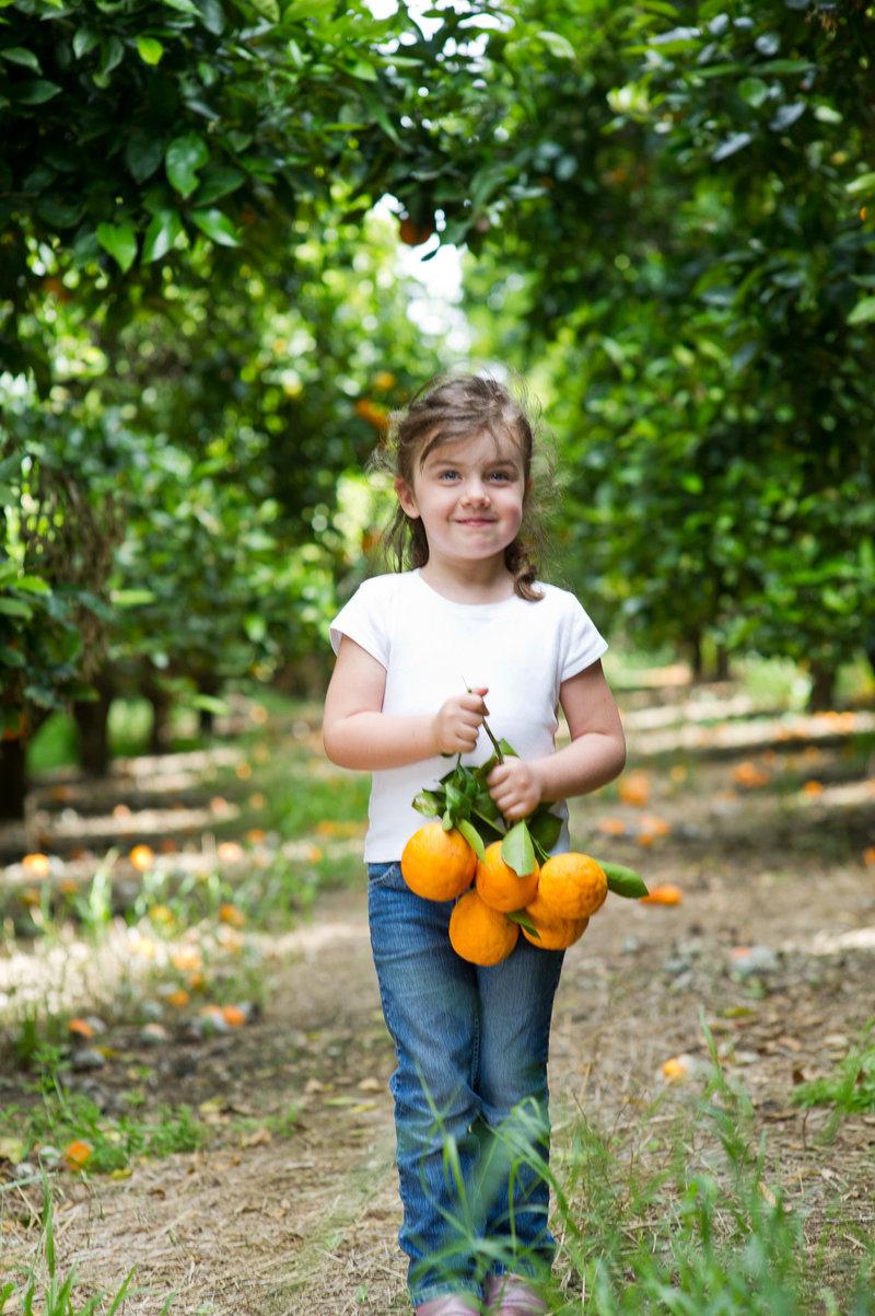 1_Stehyl Organic Farms-070-2016-Portfolio