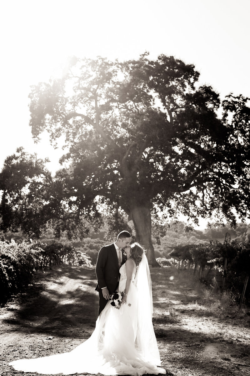 cassia_karin_ferrara_photography_paso_robles_weddings_west_coast_professional_portfolio_hammersky_nima_kristie-119
