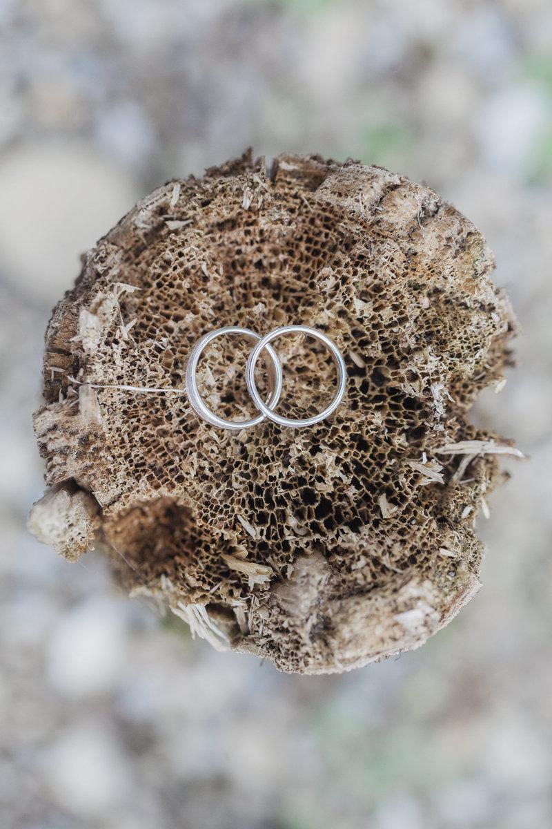 Detail, Ringshot, Eheringe, Hochzeitsfotos