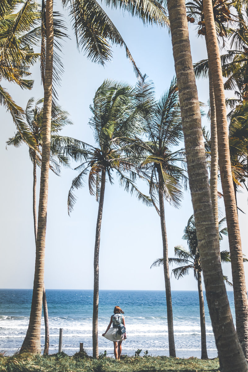Canva - Woman Standing Near Coconut Trees
