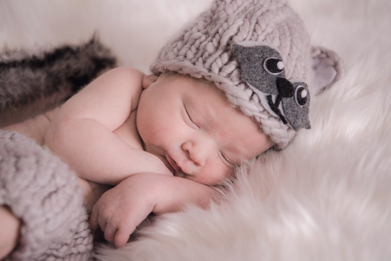 JandDstudio-baby-newborn-infant-studio-raccoon-face
