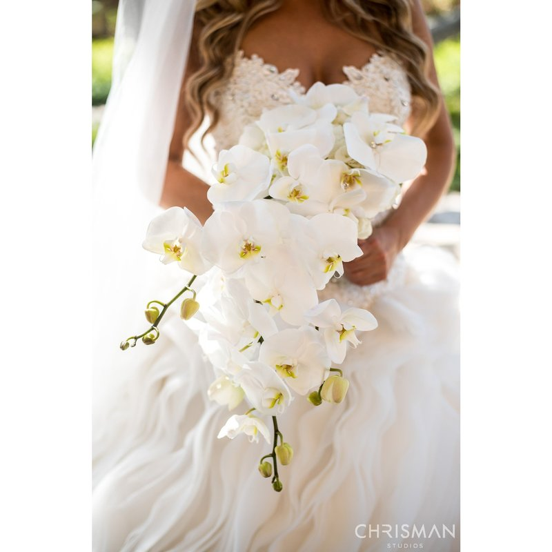 16-Dorado-Beach-Ritz-Carlton-Reserve-Wedding-Chrisman-Studios