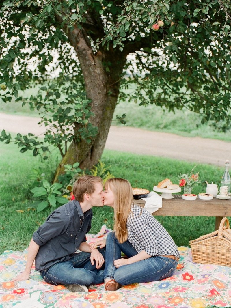 Engagement Picnic Photos