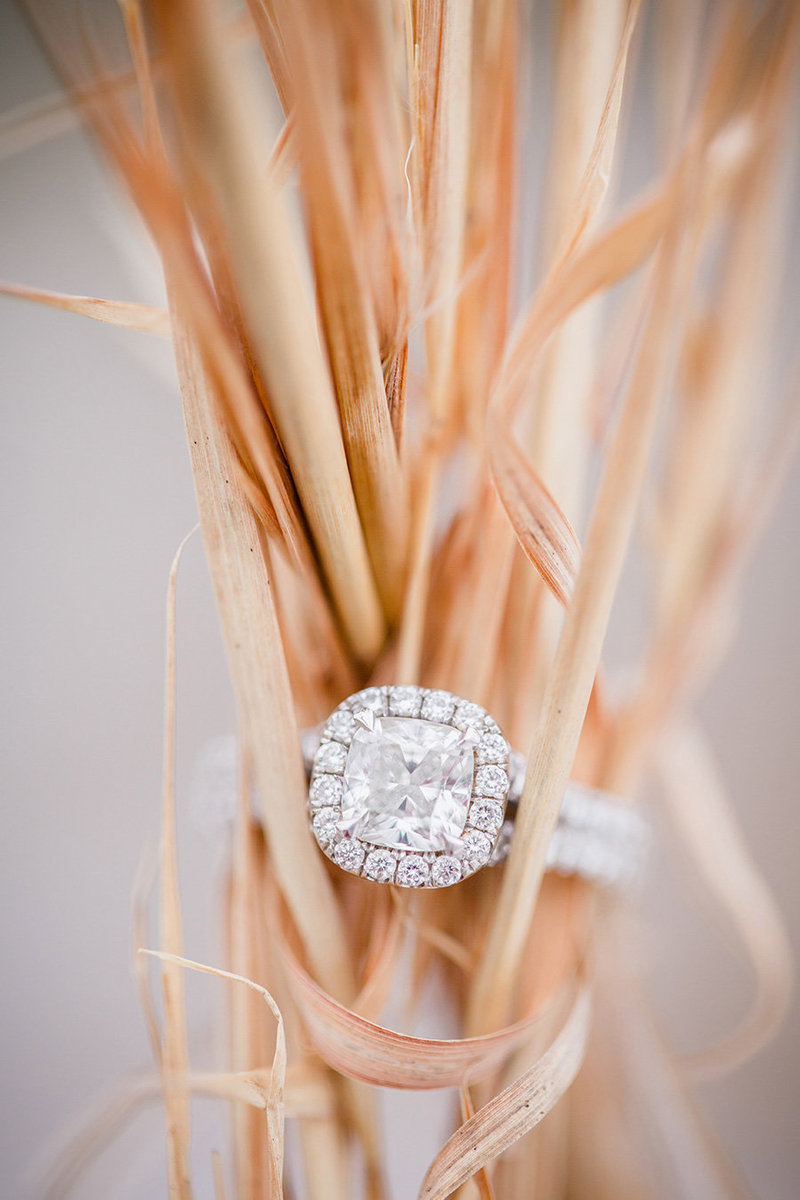 Ring around a cluster of hay grass at Sterchi Park in Knoxville, TN by Knoxville Wedding Photographer, Amanda May Photos.