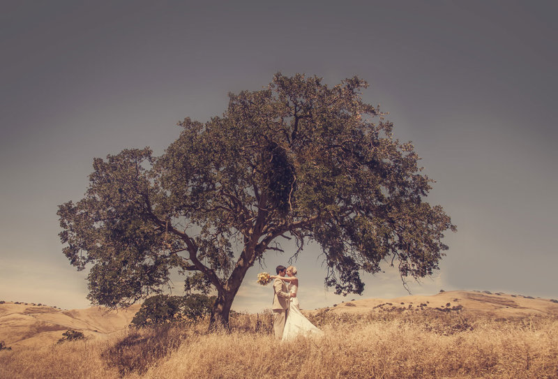 wedding-photographers-napa