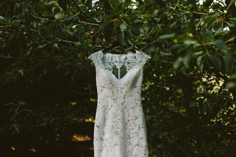 Wedding dress hanging in Trees in Red Lodge MT