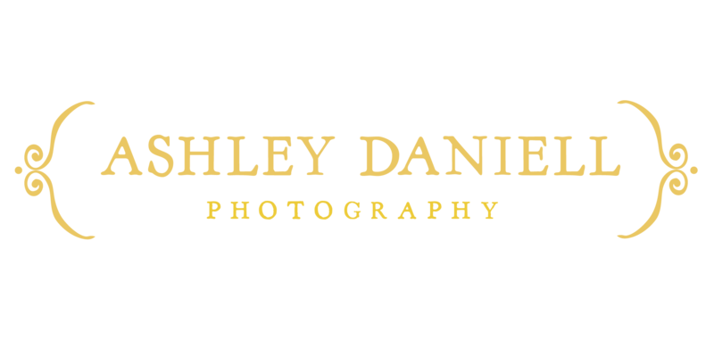 Ashley_Daniell_Logo_photography_brackets-01