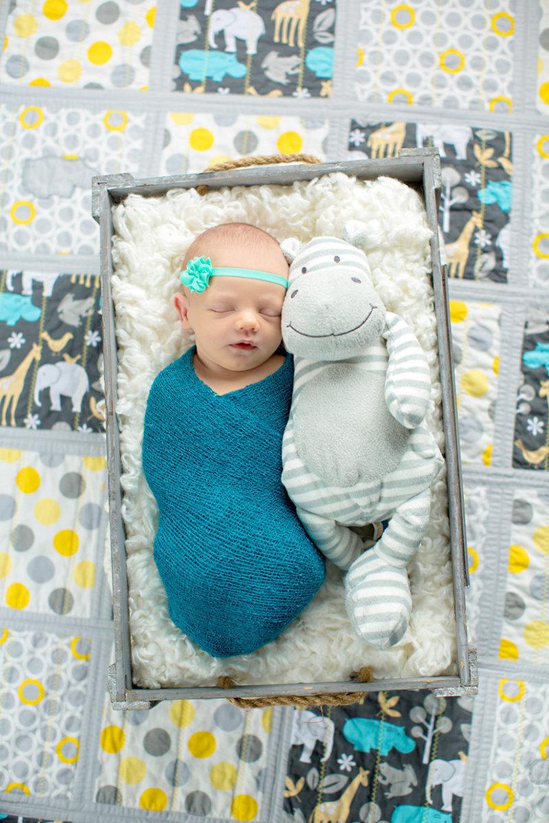 myrtle beach newborn girl teal grey yellow photographer
