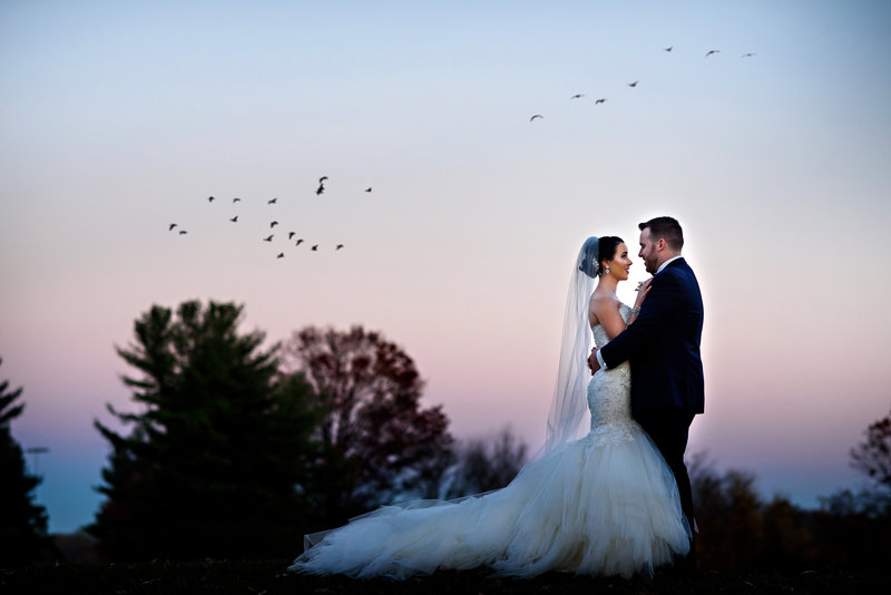 Birds fly over a newly married couple at their northampton valley country club wedding.