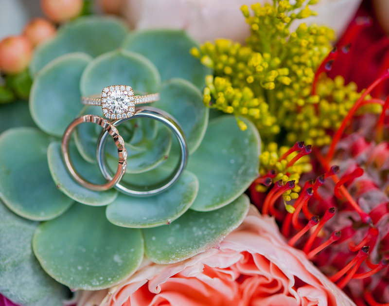 Rose Gold Wedding bands and Succulent bouquets photographed by Fargo photographers Kris Kandel wwww.kriskandel.com