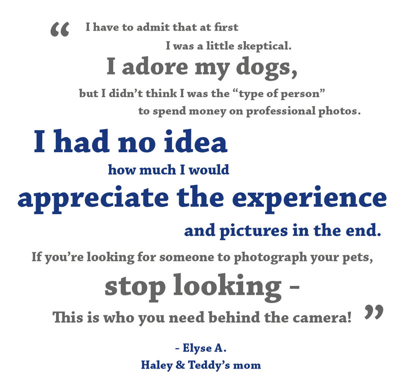 pet photographer testimonial