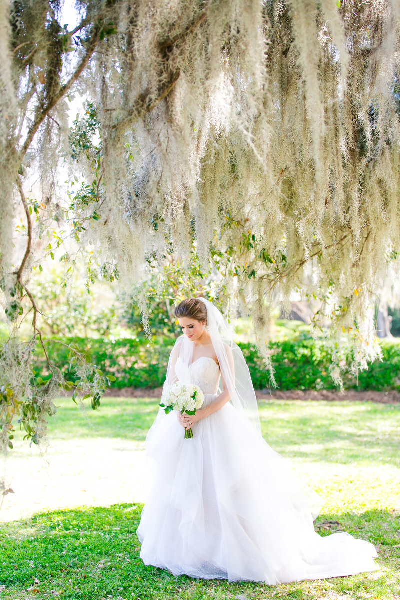 Boone Hall Bridal Portraits