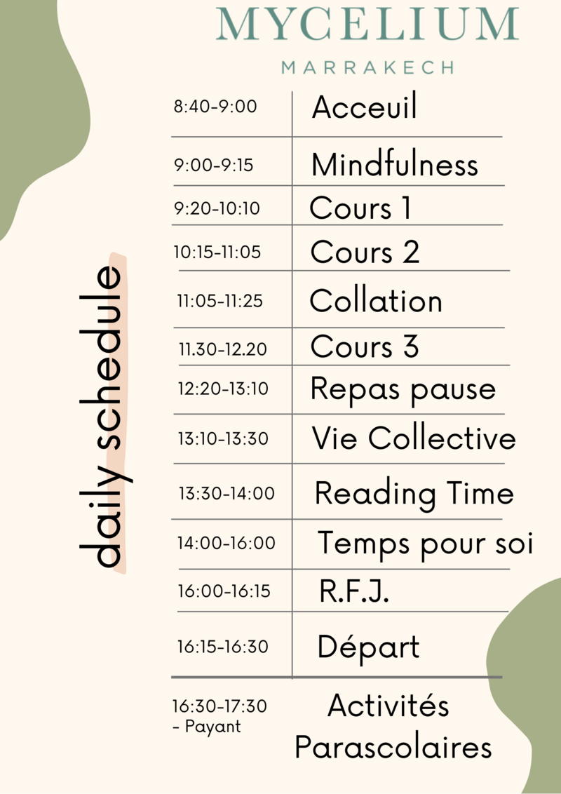 daily schedule2